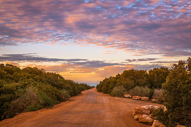 Dirt road in rural Australian outback. Natural landscape in remo stock photo