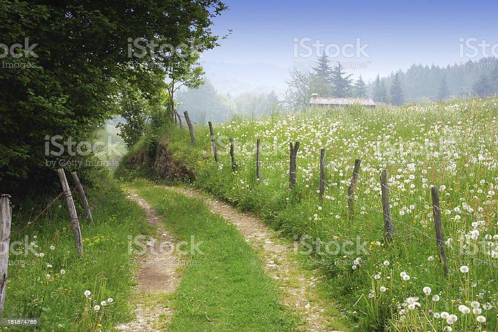 Schotterstrecke in ländlichen Frühling Landschaft - Lizenzfrei Baum Stock-Foto