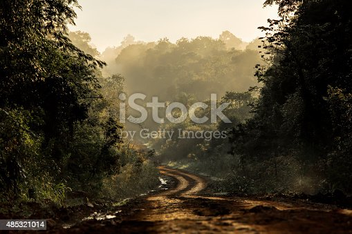 istock Dirt road in the jungle 485321014