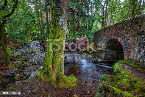 Stone bridge over the the Shimna River in the Tollymore Forest Park located at Bryansford, near the town of Newcastle, Northern Ireland.
