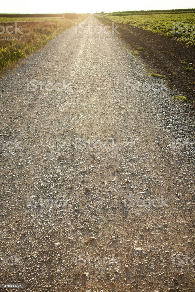 Dirt Road on Sunset royalty-free stock photo