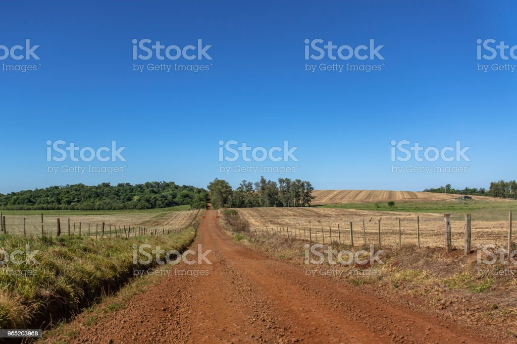 Dirt road passing in the middle of farms with fence zbiór zdjęć royalty-free