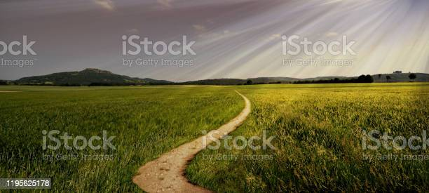 Photo of dirt road path panorama broad trail swinging sun summer