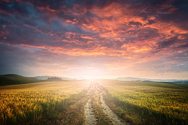 dirt road - dramatic sky stock photos and pictures