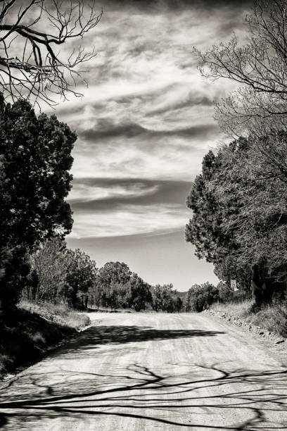Schmutzweg, Schatten und Wolken – Foto