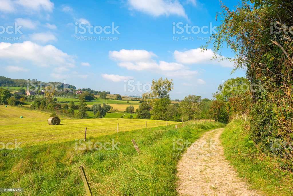 Dirt road through the countryside in summer stock photo