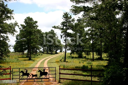 Dirt road leading over the hill.  Yellow flowers in bloom in the pasture.  Iron gate shows two cowboys roping a calf.  Mud puddles in the road bed.  Near Austin Texas.