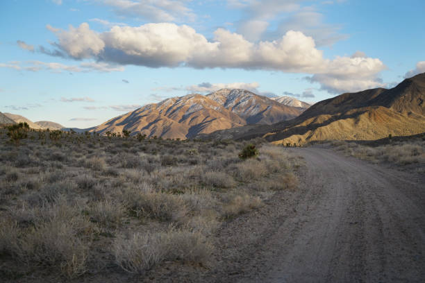 A dirt road winds through a desert landscape in the late afternoon stock photo