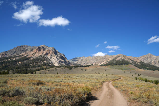 A dirt road winds towards the mountains on a sunny afternoon. stock photo