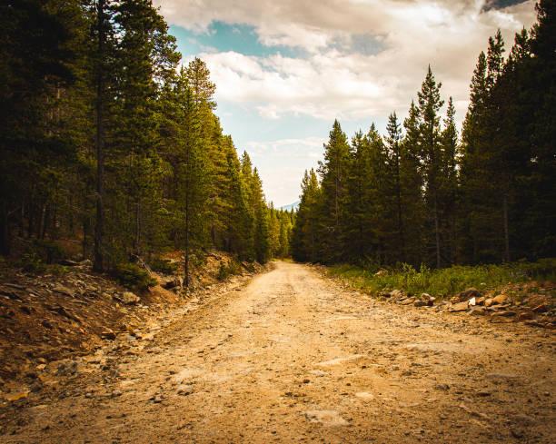 dirt road with trees and sky with clouds - trilho imagens e fotografias de stock