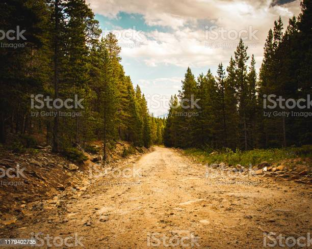 Photo of Dirt road with trees and sky with clouds