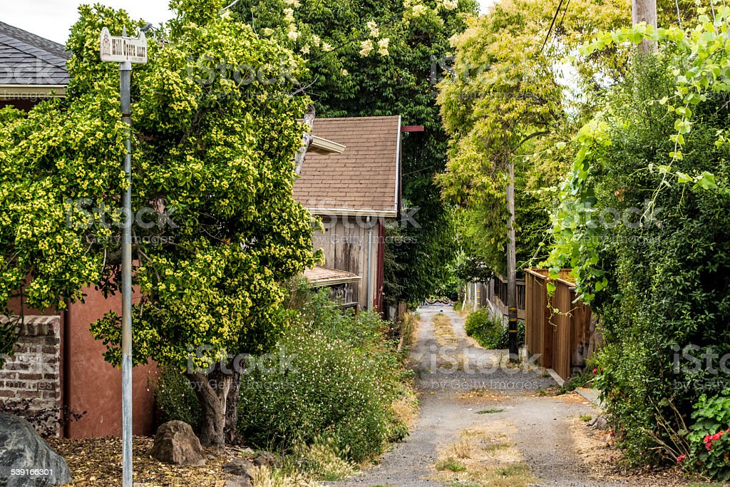 Dirt Road/Alley in Northern California stock photo