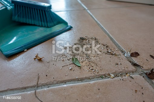 473158422 istock photo dirt swept with a broom is lying on the floor 1189203702