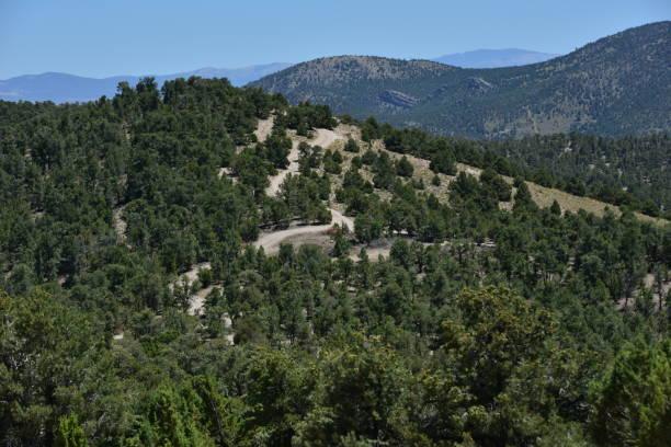 Ein Feldweg in Garnet Hill in Ely in Nevada. – Foto