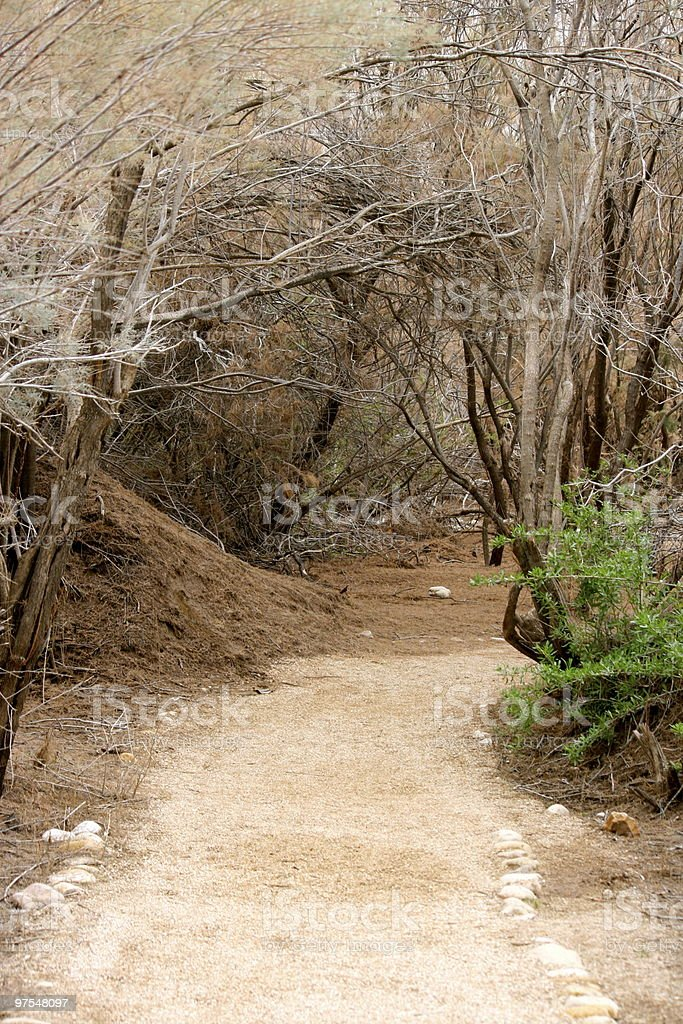 Dirt Trail royalty-free stock photo