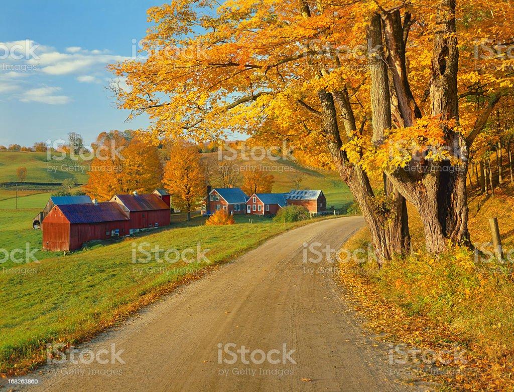 Dirt Vermont road during autumn stock photo