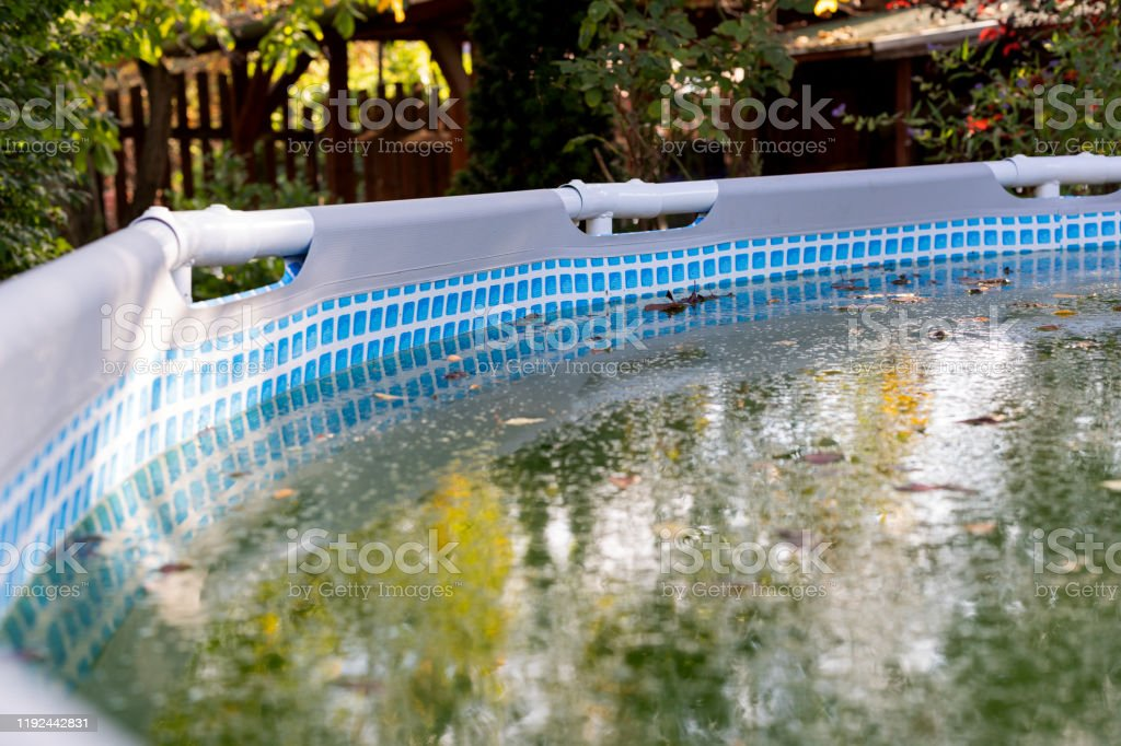 Dirty And Abandoned Swimmingpool Stock Photo Download Image Now Istock