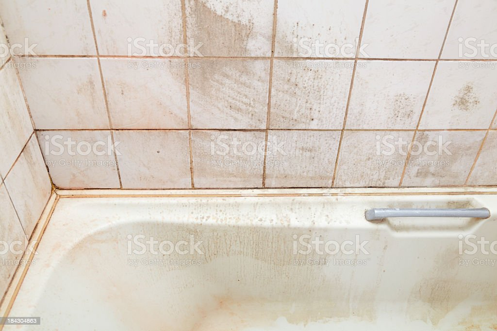 dirty bath and shower tiles royalty-free stock photo