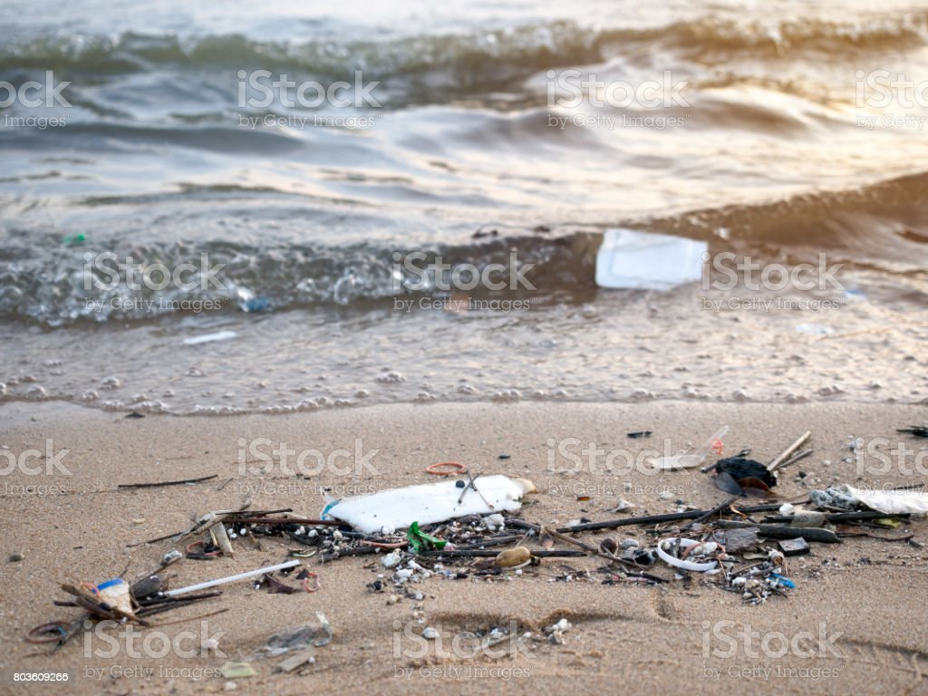 Dirty beach,sea pollution. stock photo