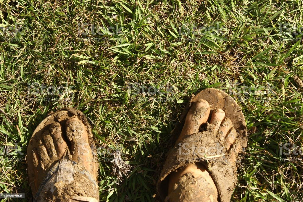 dirty foot in the grass stock photo