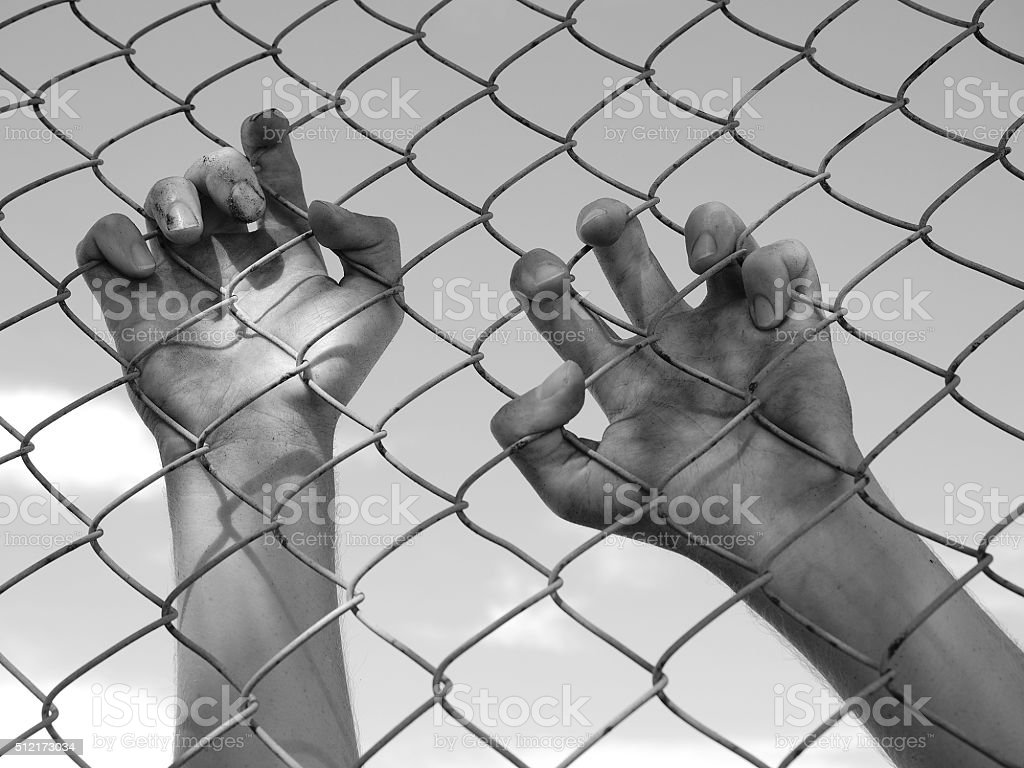 Dirty Hands Clinging To A Steel Wire Fence Stock Photo & More ...