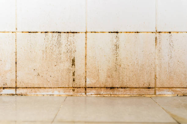 Dirty on ceramic wall in bathroom stock photo