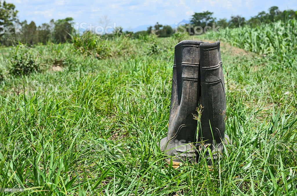 Dirty rubber boots stock photo