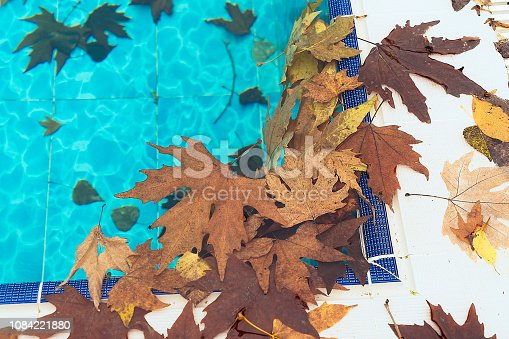 Dirty swimming pool in autumn season