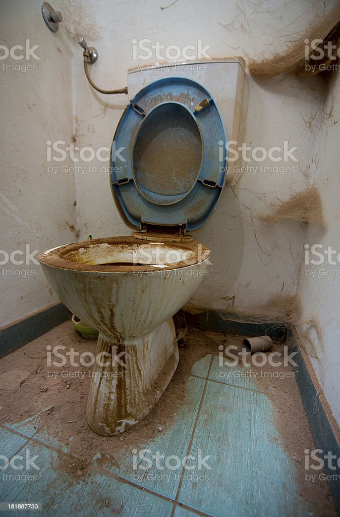 dirty-toilet-picture-id181887730?k=6&m=1
