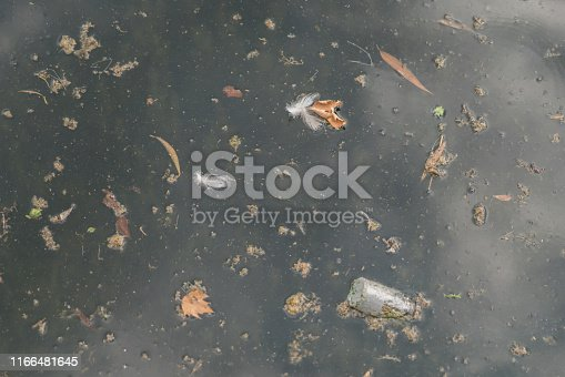 Dirty water surface.