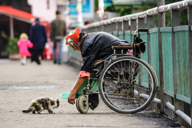 disabled female beggar trying to feed a cat stock photo