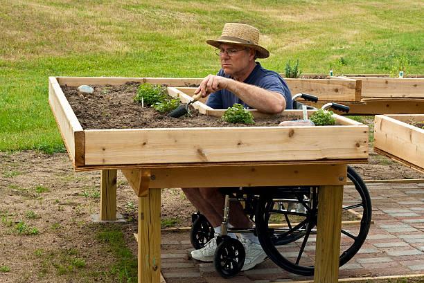 disabled gardener stock photo