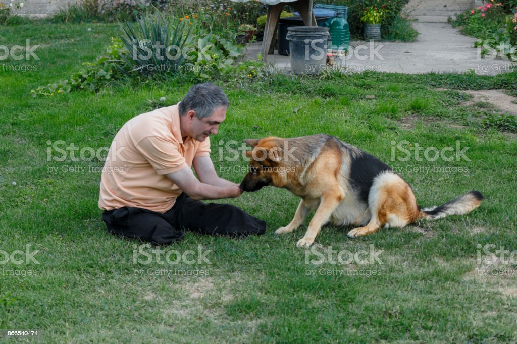Disabled person sits on the grass and plays with a German shepherd.