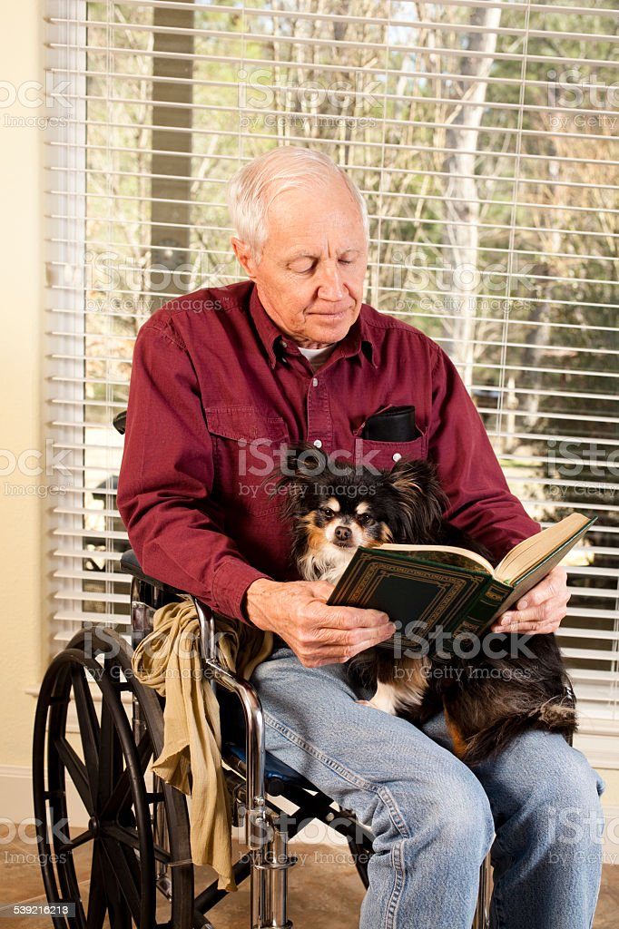 Disabled senior adult man sits in a wheelchair and reads a book with...