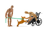 disabled wooden mannequin in wheelchair petting dog - assistance dog