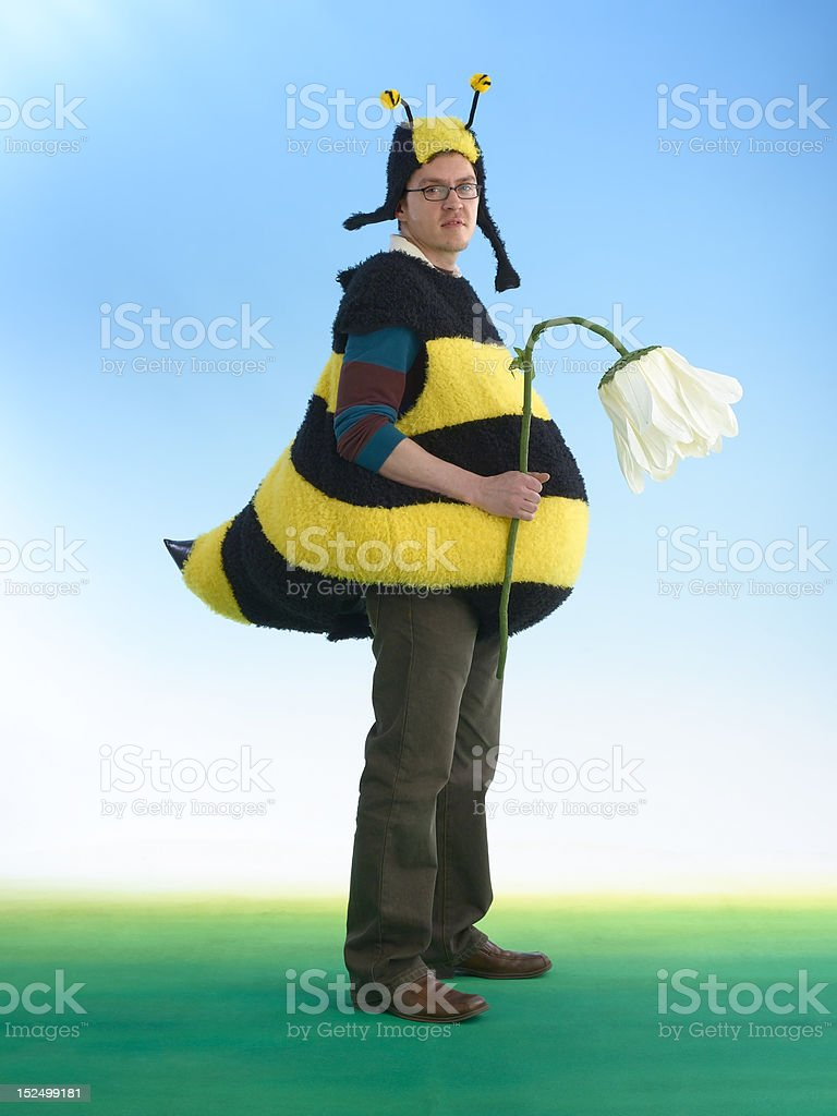 Disappointed Bee With Wilted Flower stock photo