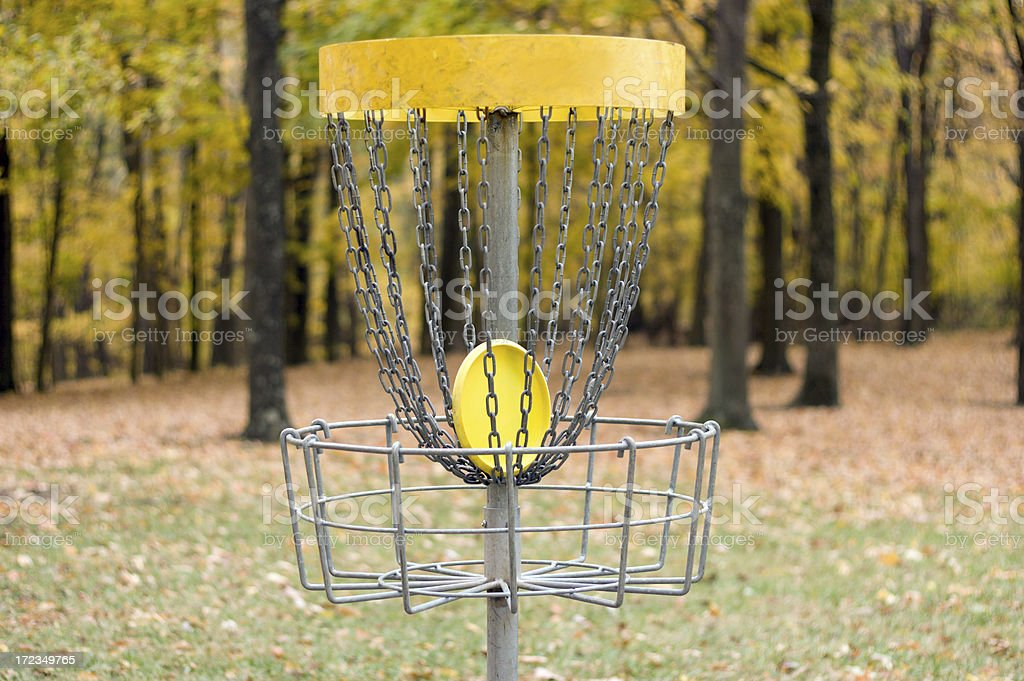 Disc Golf Success! royalty-free stock photo