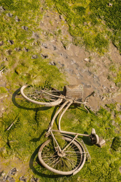 Uma bicicleta descartada com uma cesta de vime para o canal, um exemplo típico de poluição ambiental na cidade - foto de acervo