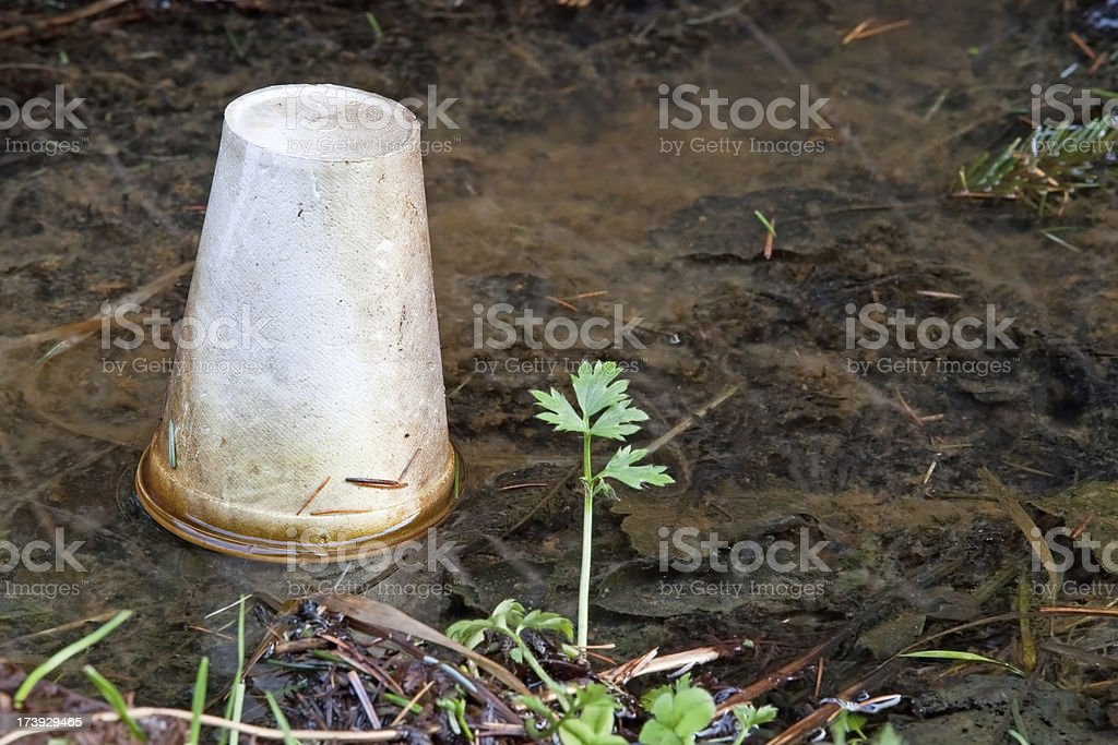 Discarded litter at side of road royalty-free stock photo
