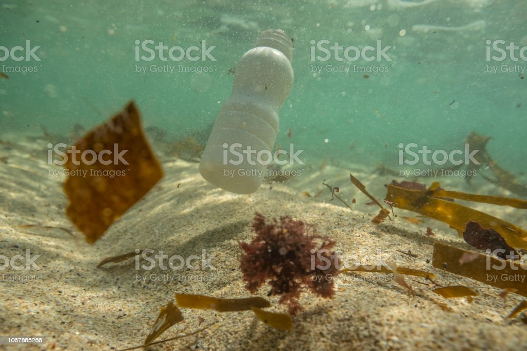 Discarded Plastic bottle floating in the sea. stock photo