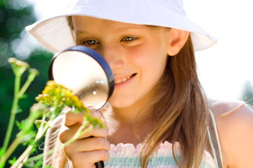 Discovering Nature Stock Photo - Download Image Now