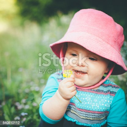 istock Discovering Nature 540510112