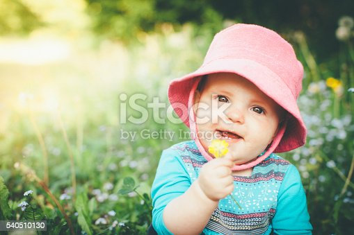 540510130istockphoto Discovering Nature 540510130