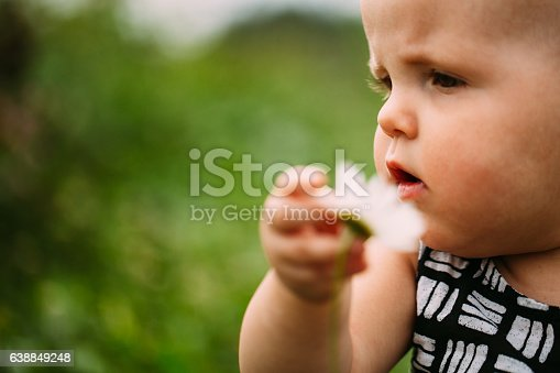 istock Discovering Nature 638849248