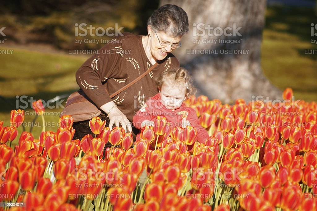 Discovering Spring royalty-free stock photo