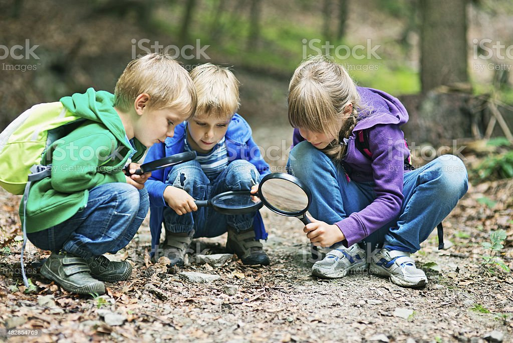 Discovering the mysteries of nature royalty-free stock photo