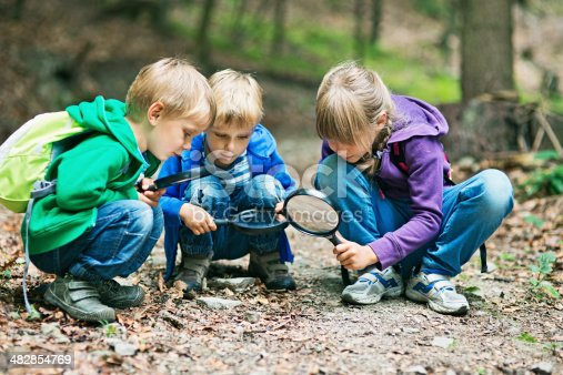 istock Discovering the mysteries of nature 482854769