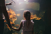 Photo of a little girl, discovering sea life in the local aquarium, together with her mother