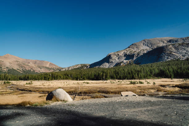 discovering yosemite national park - granite rock stock photos and pictures