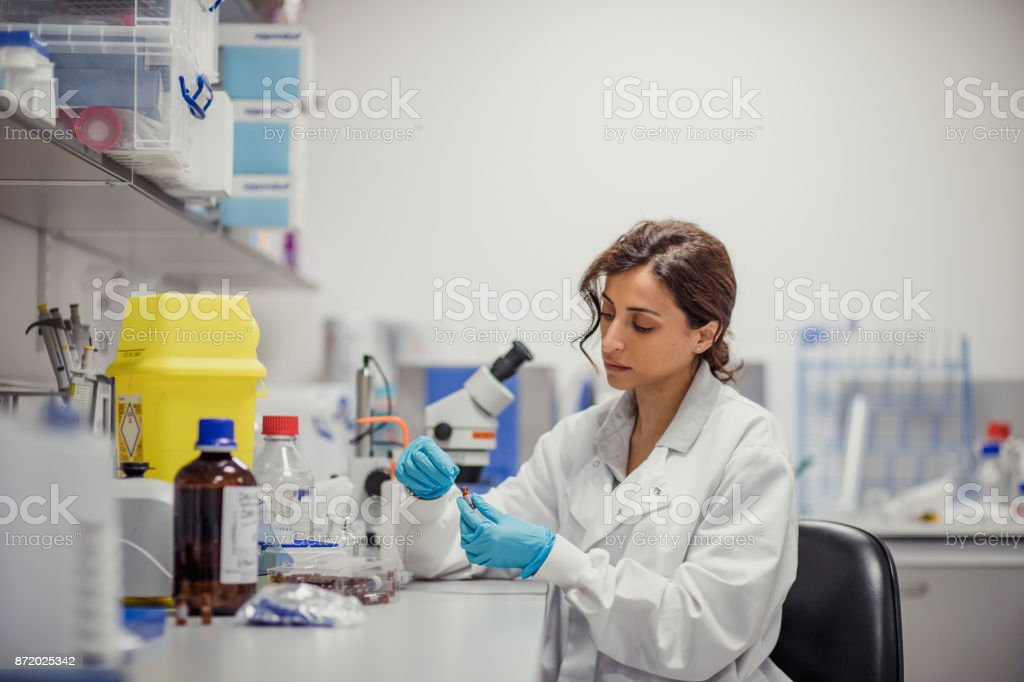 Disease Diagnosis Laboratory stock photo
